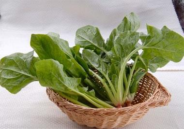 [万康饮食]夏季降火应多吃的三类蔬菜